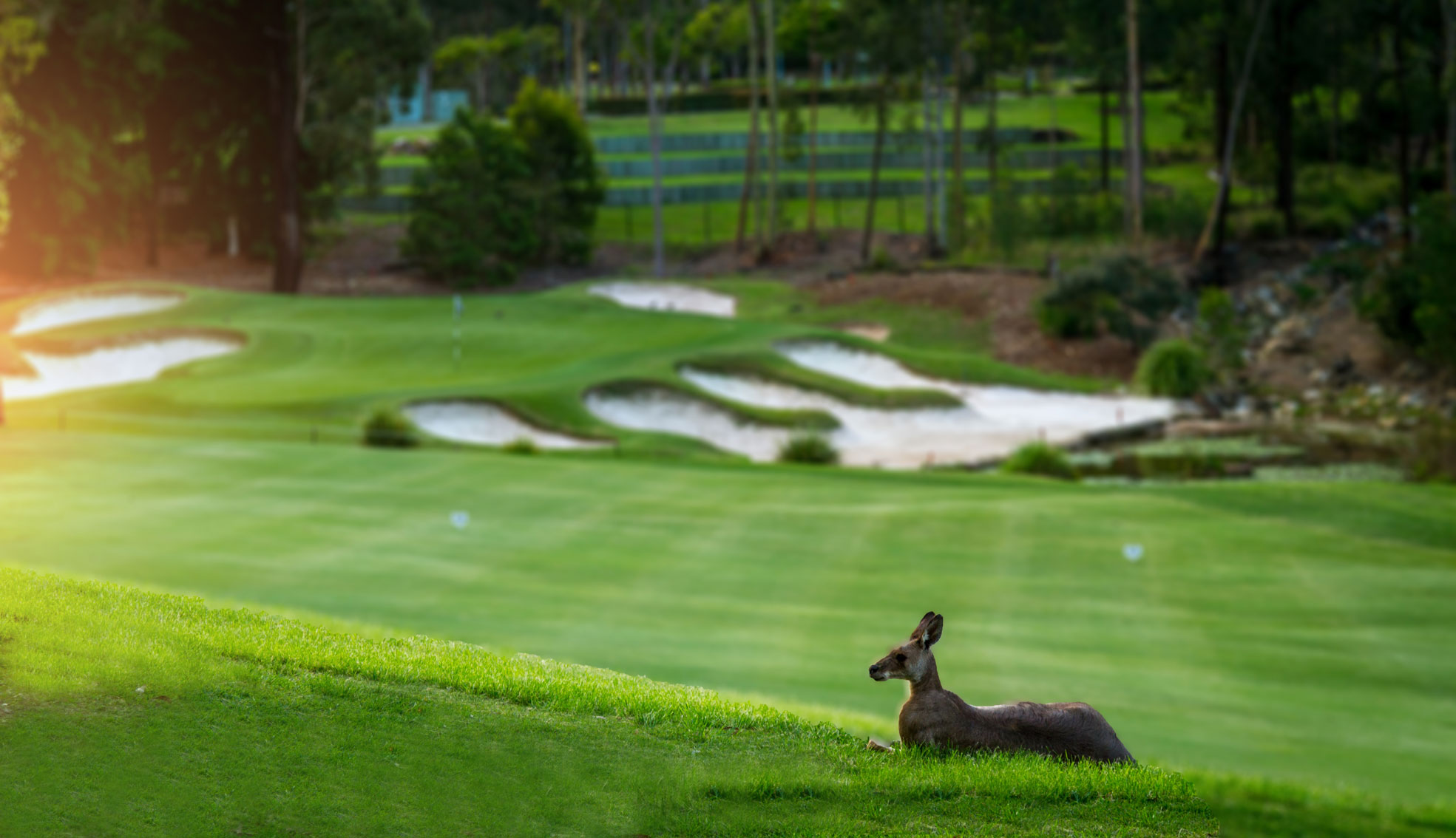 Brookwater Golf Club | AUSTRALIA