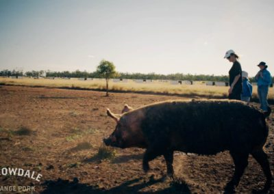 The Borrowdale Pork Journey | AUSTRALIA